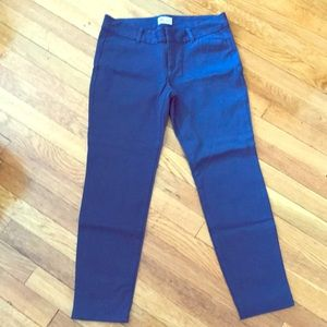 Navy / Blue Ankle Cropped Pixie Pant